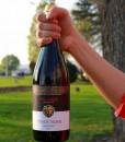 - Szeleshát Pinot Noir 2011 szekszárd